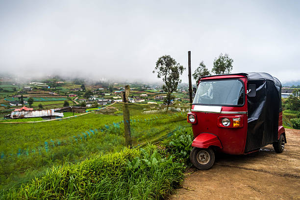 Red tuktuk on a vegetable plantation – Foto