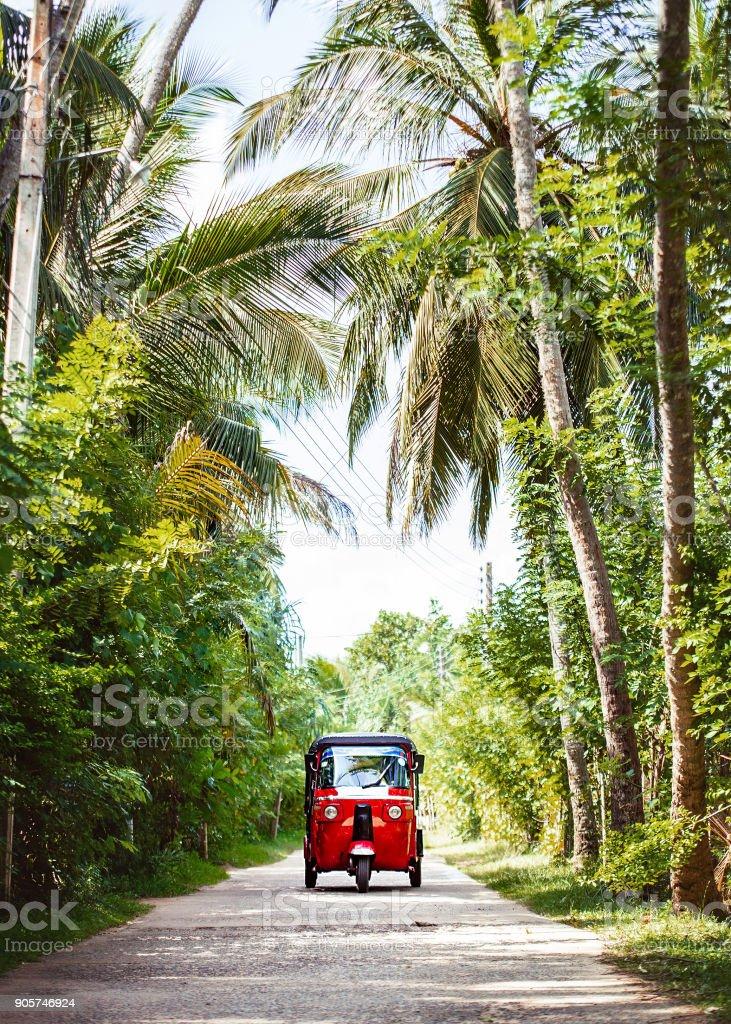 Roten Tuk-Tuk unter den Palmen auf der Landstraße – Foto