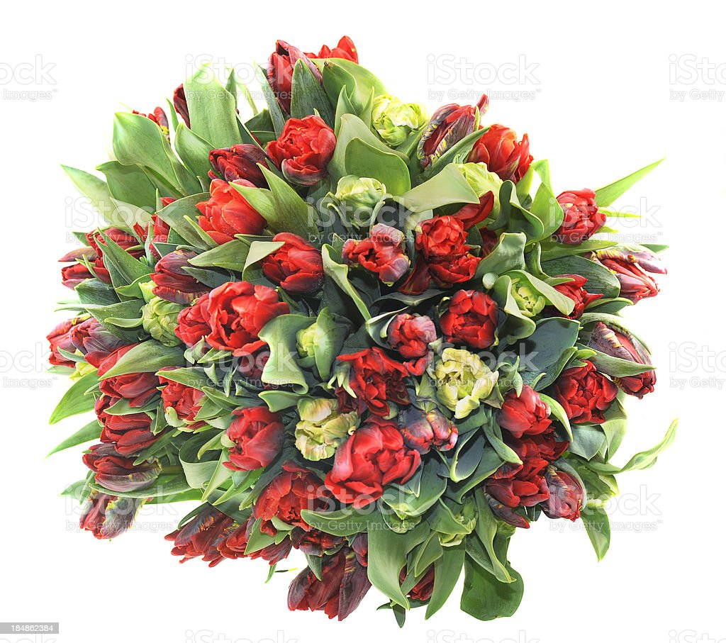 red tulip bunch as gift royalty-free stock photo