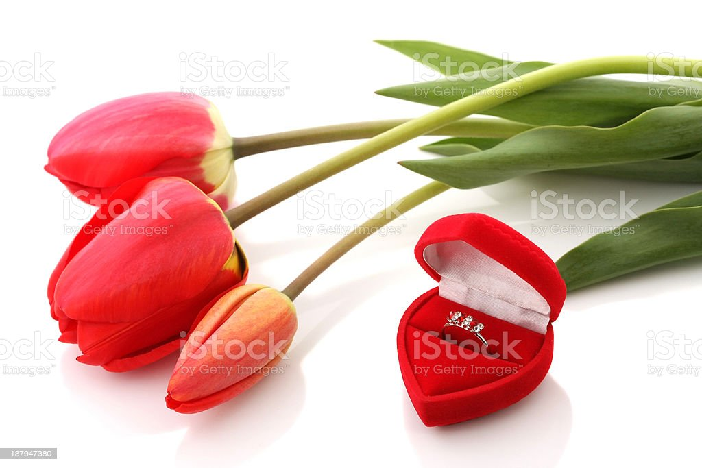 Red tulips and Jewelry Box with ring royalty-free stock photo
