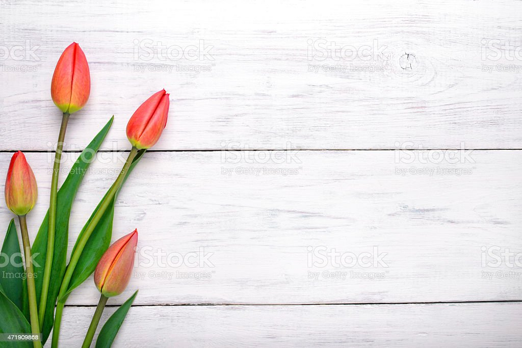 Red tulips flowers on wooden table. background with copy space. stock photo