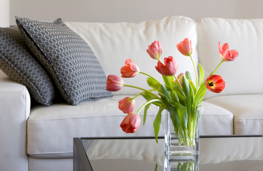 red tulips in modern living room - home decor
