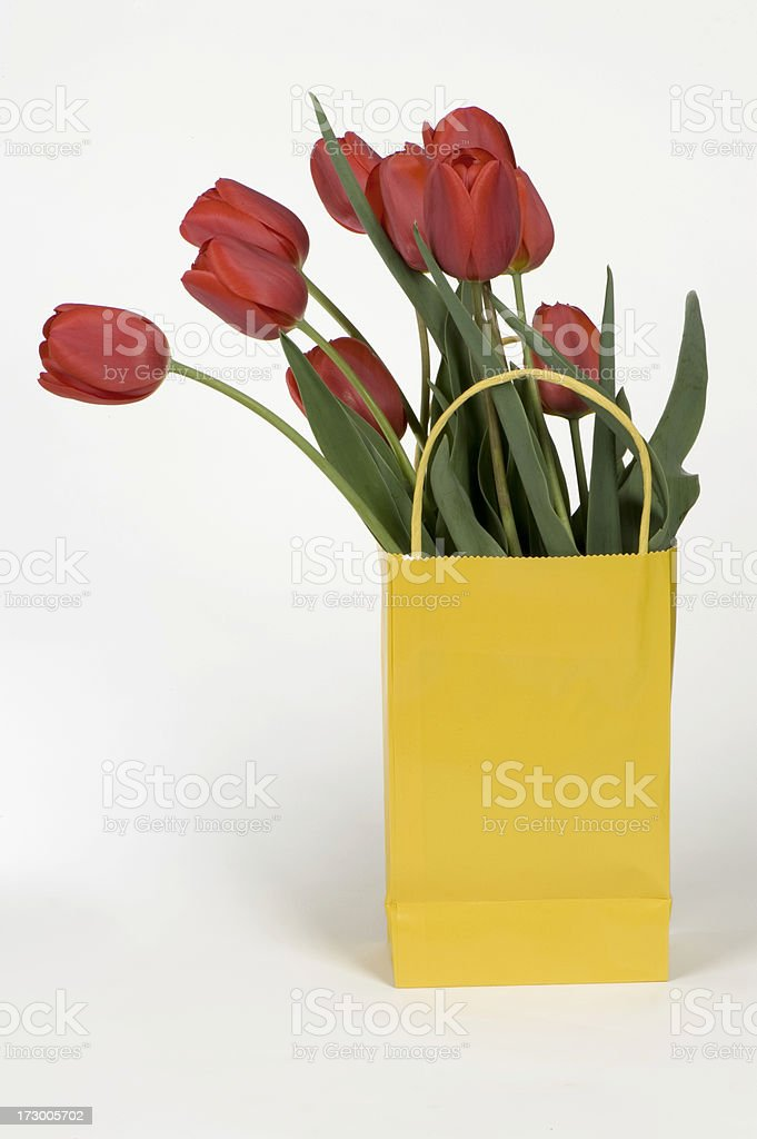 Red tulips in yellow gift bag with handles royalty-free stock photo
