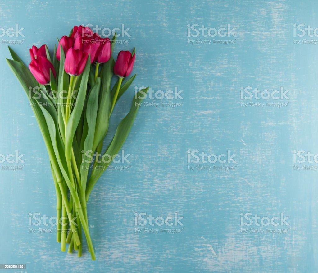 Red Tulips on Weathered Aqua Background stock photo