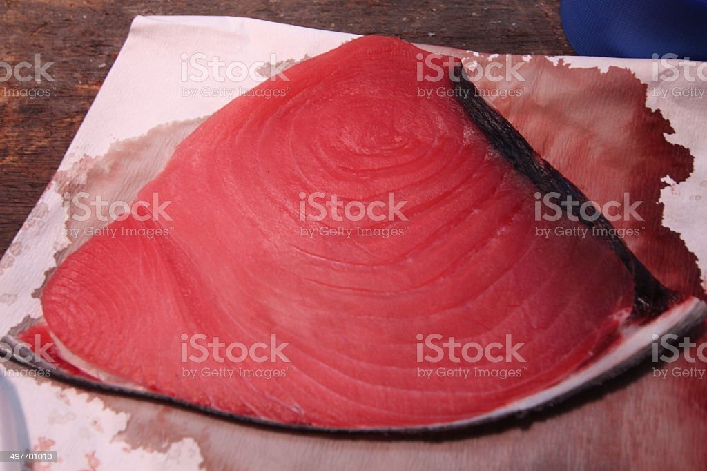 Atun rojo stock photo