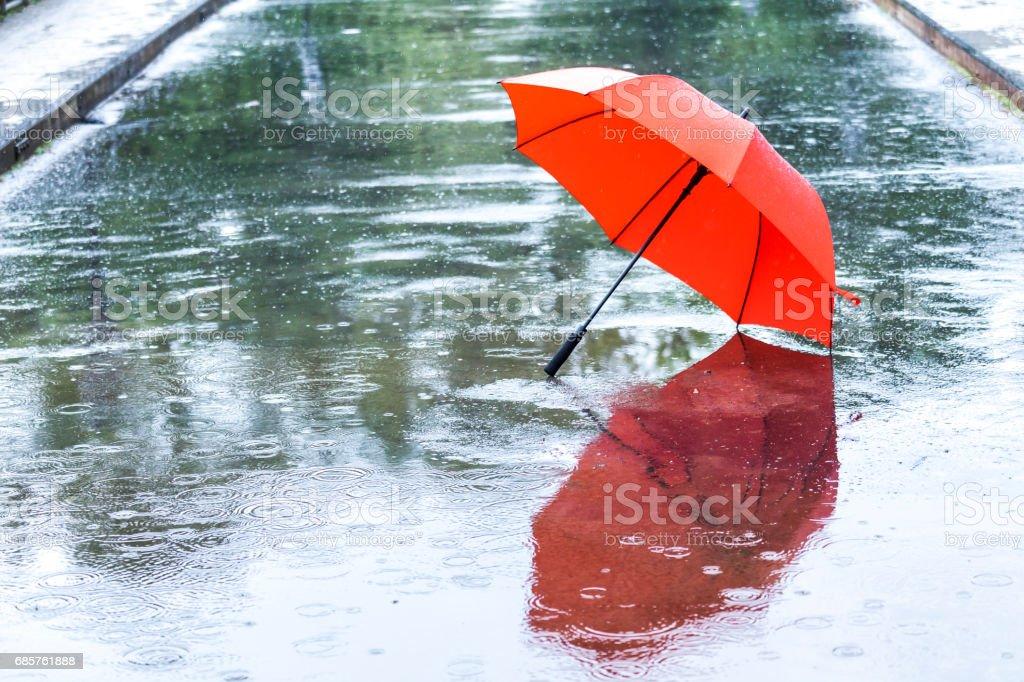 Rode paraplu royalty free stockfoto