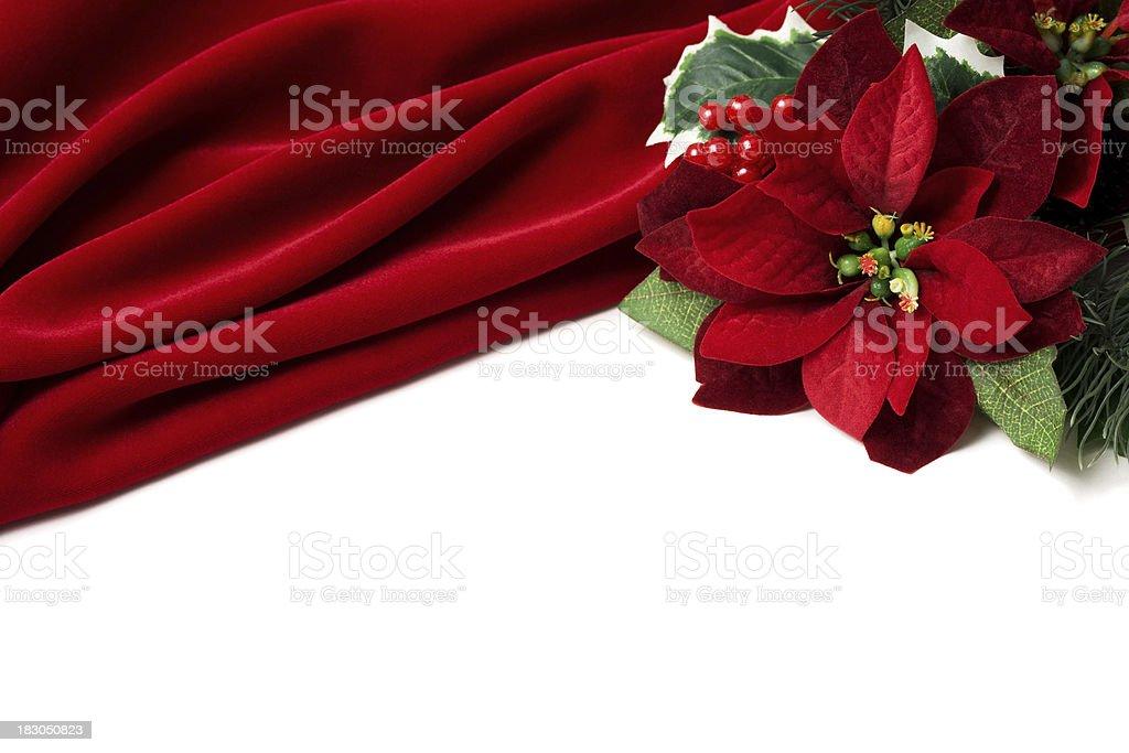 Red Velvet Poinsettia Border royalty-free stock photo