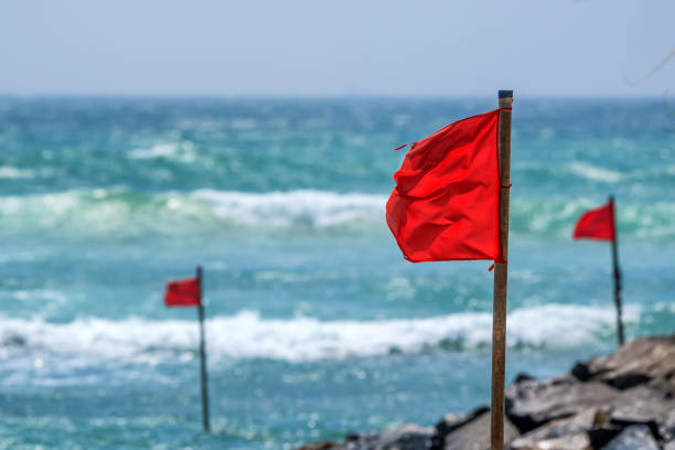 red warning flag on beach - danger stock pictures, royalty-free photos & images