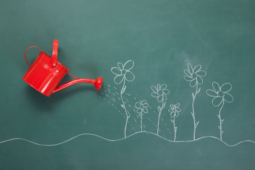 Red Watering Can And Flowers Drawings On Blackboard
