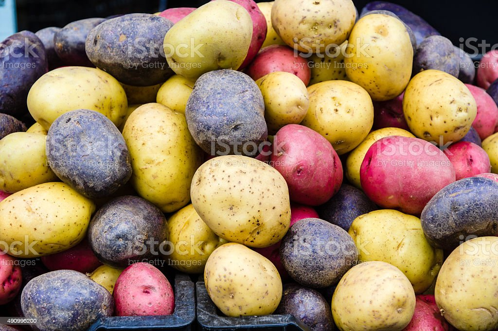 Red, white and blue potatoes stock photo