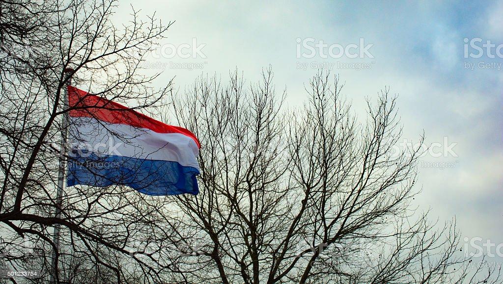 Azul, rojo y blanco de la bandera nacional en invierno holandés - foto de stock