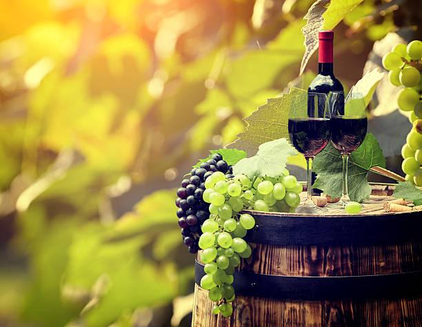 레드 와인 및 유리컵 의 wodden에 배럴. 스톡 사진