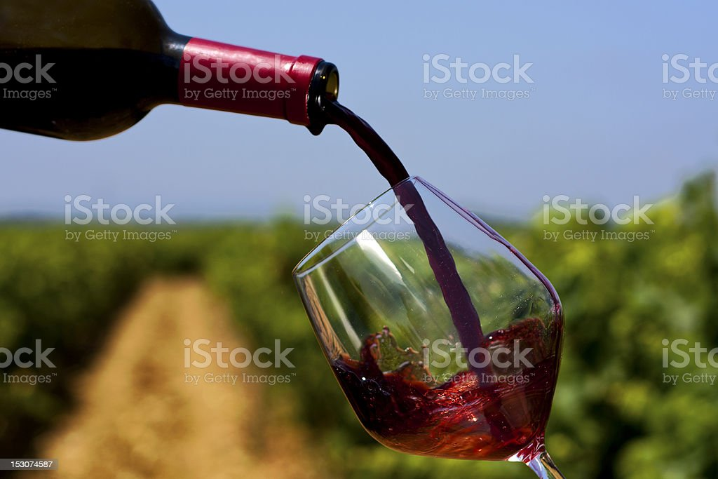 Red wine being poured in glass outside a vineyard stock photo
