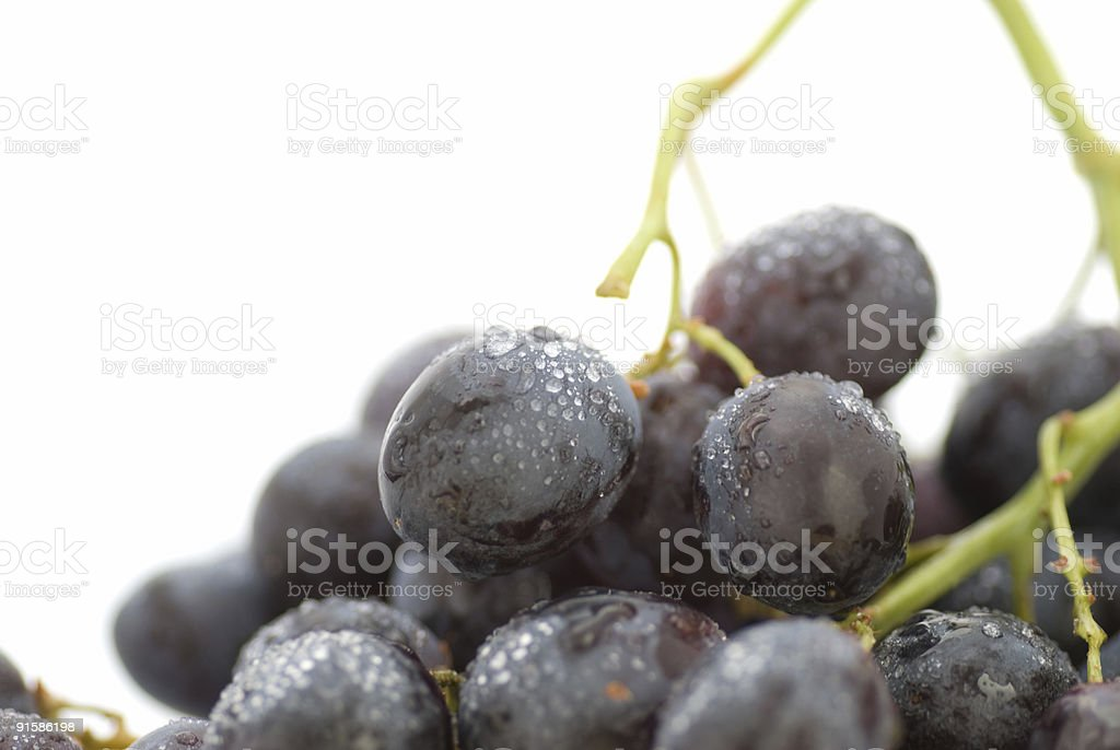 red wine, grape isolated on a white background royalty-free stock photo