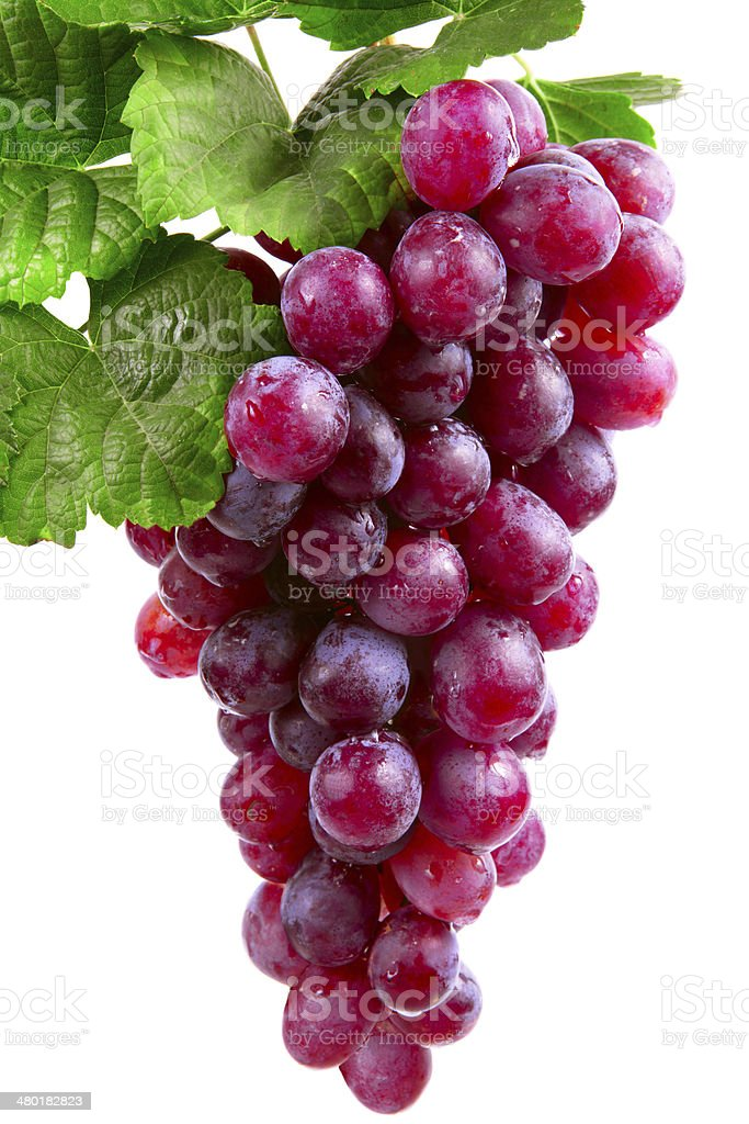 red wine grape, isolated stock photo
