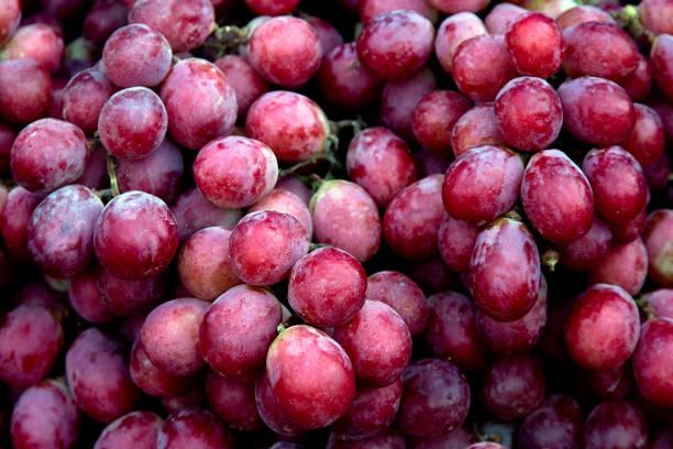 fondo de uvas de vino rojo oscuro uvas, uvas azules, uva roja, uva cardinal, uva emperador - grapes fotografías e imágenes de stock