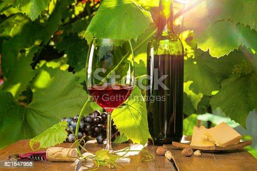 619246768 istock photo Red wine 821547958
