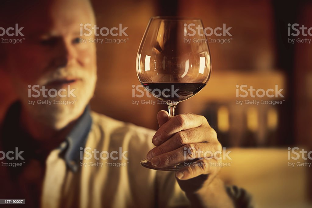 Red Wine Tasting in the Cellar Horizontal royalty-free stock photo