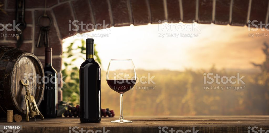 Red wine tasting in the cellar stock photo