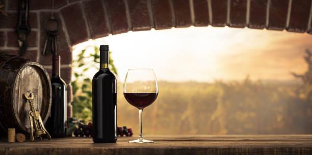 Degustación en la bodega de vino tinto - foto de stock