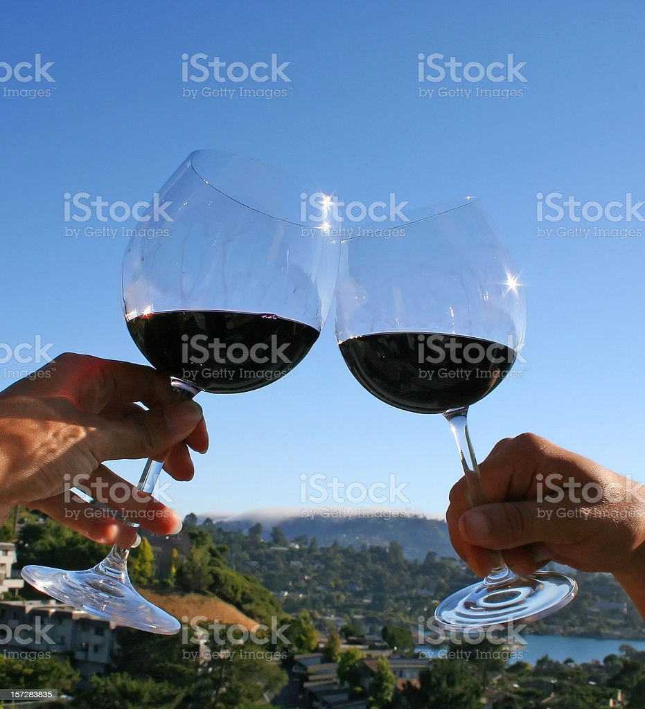 REd Wine Toast outdoors with stemware royalty-free stock photo
