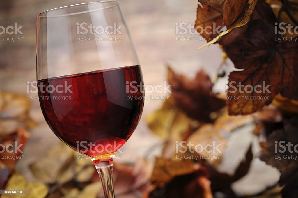 Red Wine with Autumn Decoration royalty-free stock photo