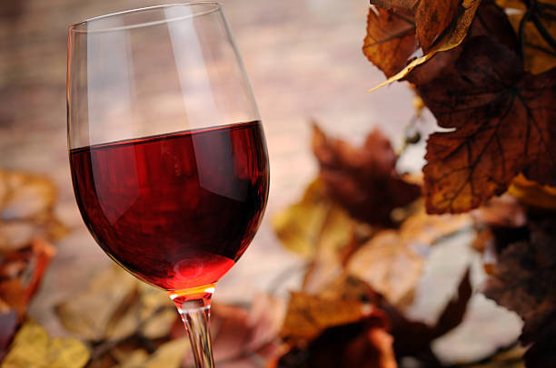 Red Wine with Autumn Decoration stock photo