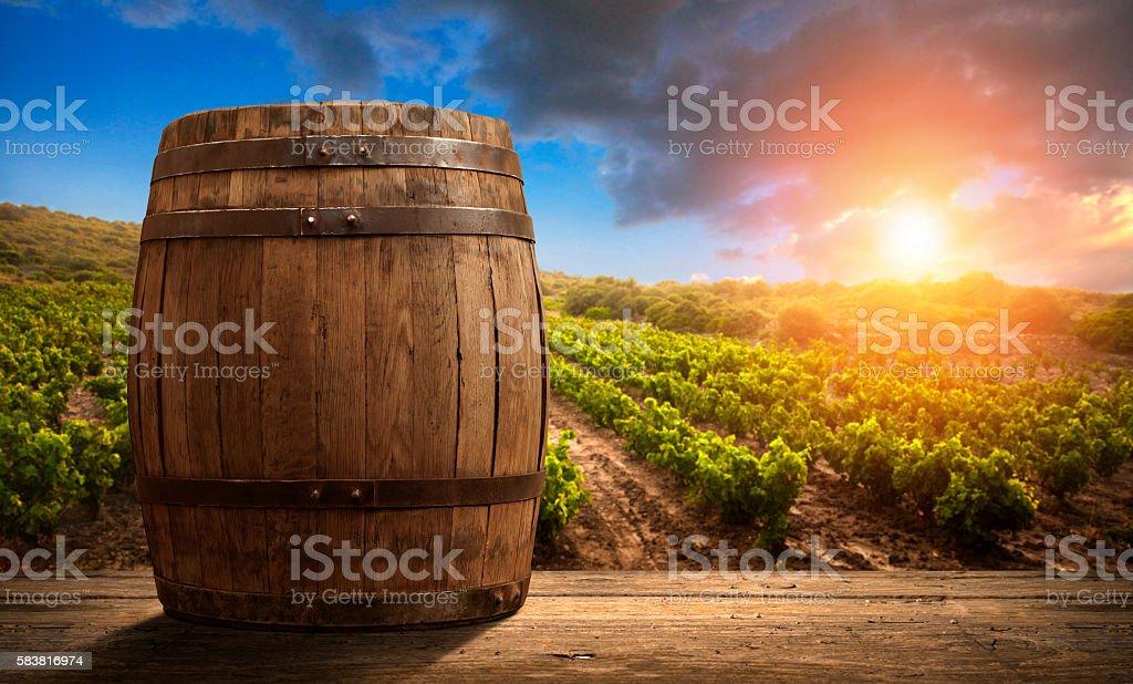 Botte di vino rosso con vigneto in verde Toscana, Italia - foto stock
