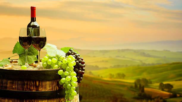 레드 와인 배럴 on 포도원입니다 녹색 토스카나 (Tuscany 스톡 사진