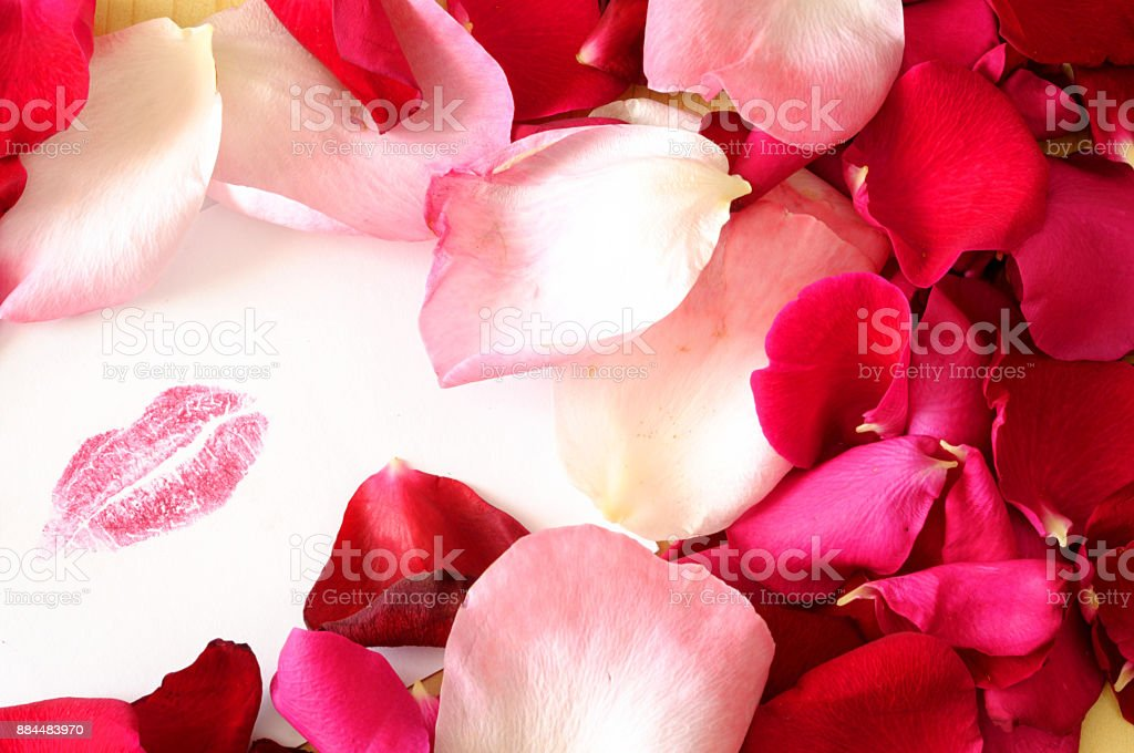 Red woman lips mark on white card among roses petals stock photo
