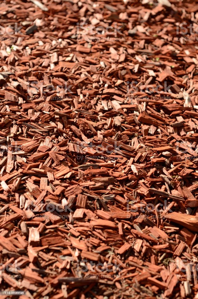 Red Wood Chip Mulch Stock Photo Download Image Now Istock