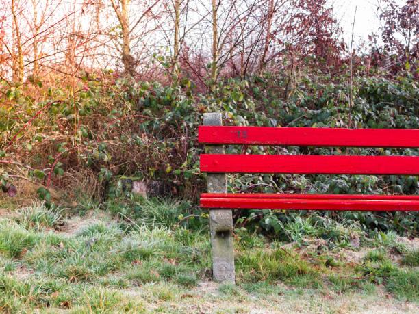 Rot Holzbank in einem Park im winter – Foto