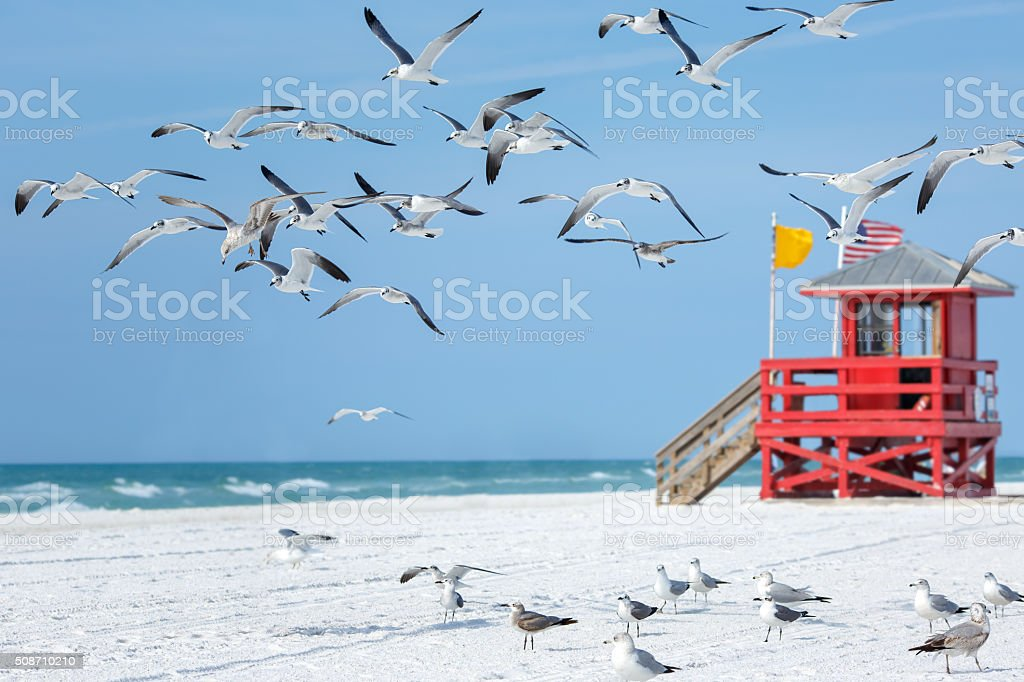 Vermelho de madeira posto salva-vidas em uma praia vazia manhã - foto de acervo