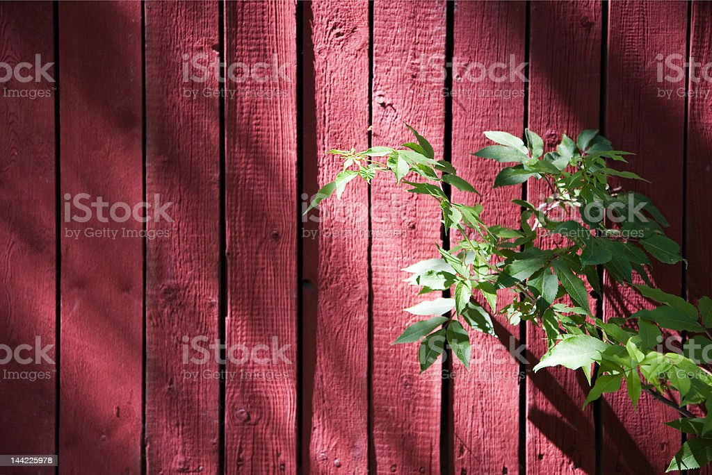 Red wooden wall royalty-free stock photo