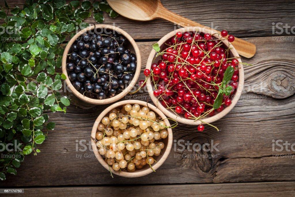 Johannisbeeren, schwarze Johannisbeere, weiße Johannisbeere Früchte. – Foto