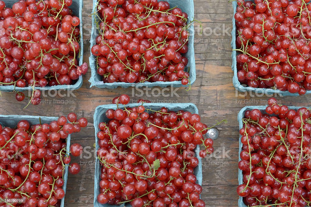 Redcurrants (Red Currants) at Farmer's Market royalty-free stock photo