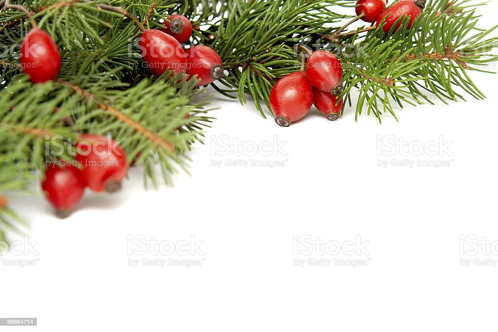 Rot-grüne Weihnachts-arrangement Lizenzfreies stock-foto