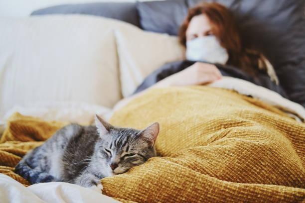 Redhead woman in medical mask sick with coronavirus and cat are lying picture id1226751973?b=1&k=6&m=1226751973&s=612x612&w=0&h=mshx21g9o3c3ynpwwv4rniooipqtzsoj y2whb3oo2a=