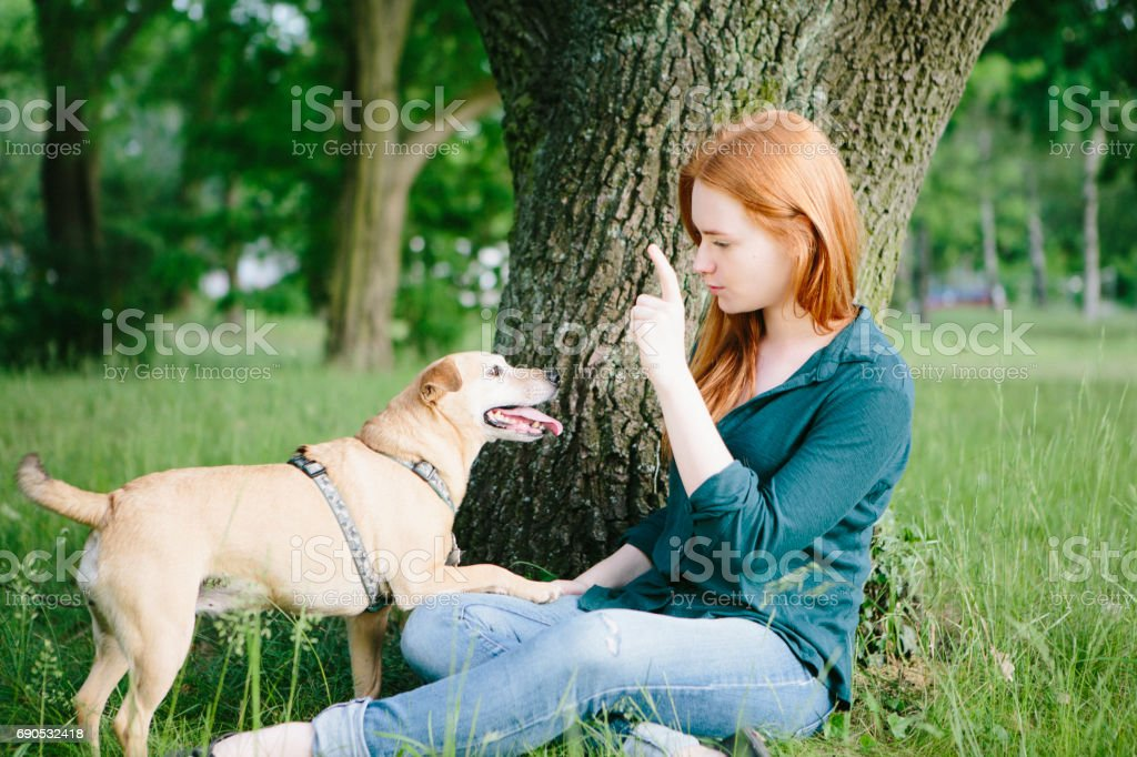 Redhead young woman and her dog have fun outdoors stock photo