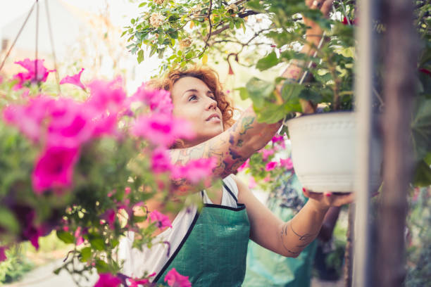 redhead young women doing re-potting in a backyard - small business saturday stock pictures, royalty-free photos & images