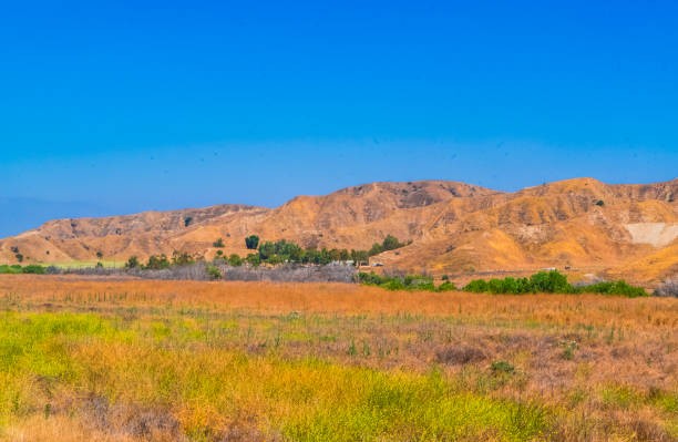 Redlands. This photo was taken at the suburban of City of Redlands. The land is dried in summer. redlands california stock pictures, royalty-free photos & images