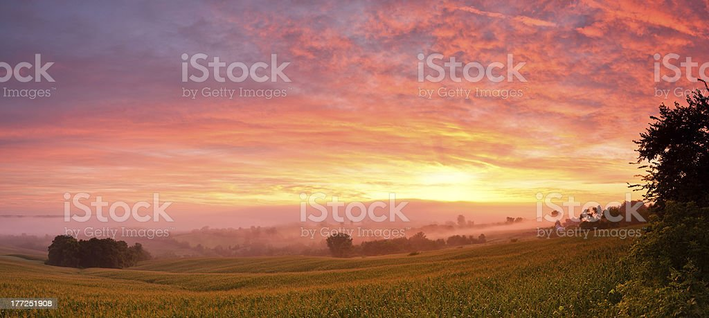 Redsky over midwest cornfield stock photo