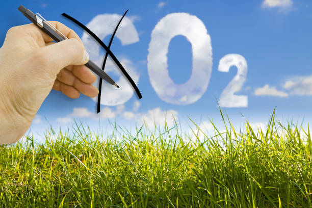 CO2 reduction concept image against a green wild grass on sky background stock photo