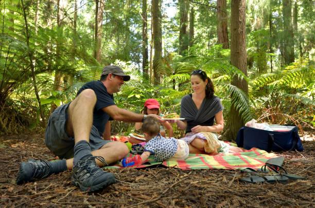 Redwoods in Rotorua New Zealand Family having a picnic outdoors in Redwoods Rotorua, New Zealand. whakarewarewa stock pictures, royalty-free photos & images