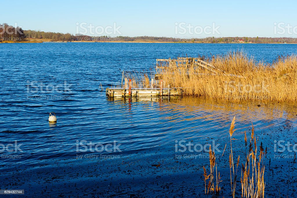 Reed covered pier in coastland stock photo