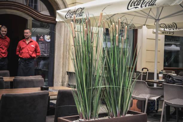 reed - bratislava hotel stock-fotos und bilder
