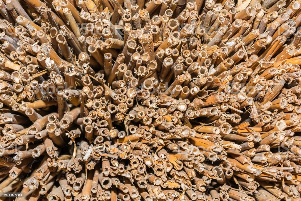 Reed roof texture in rural home stock photo