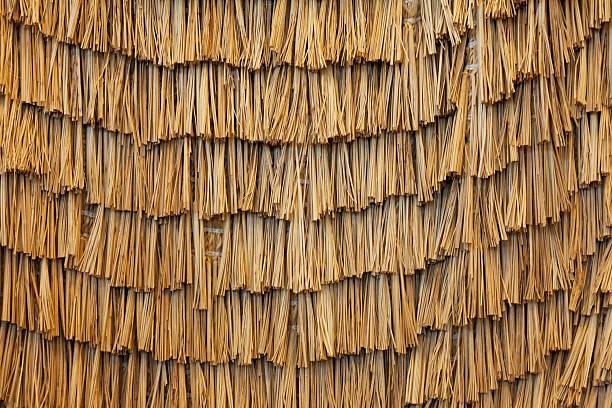 reed thatch background - strohdach stock-fotos und bilder