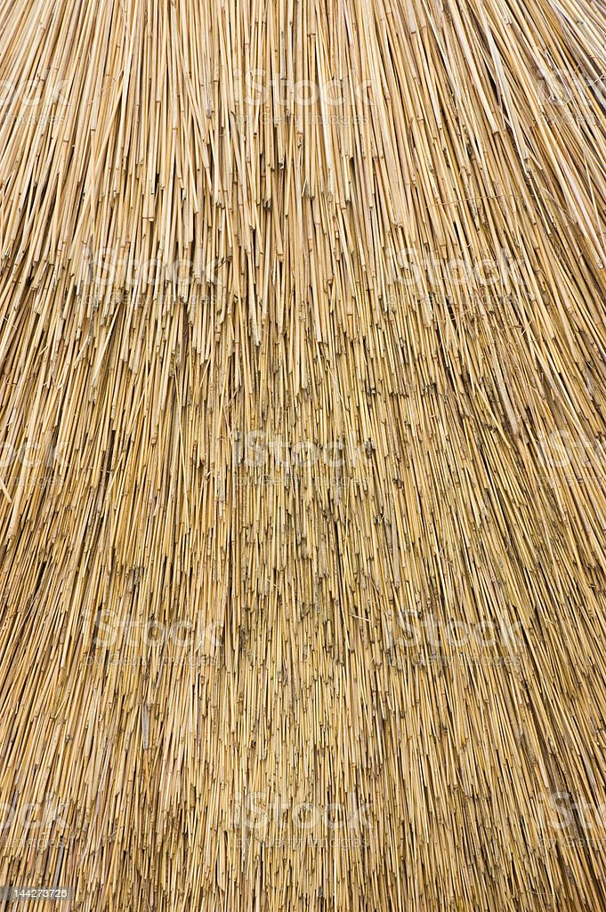 Reed Thatch royalty-free stock photo