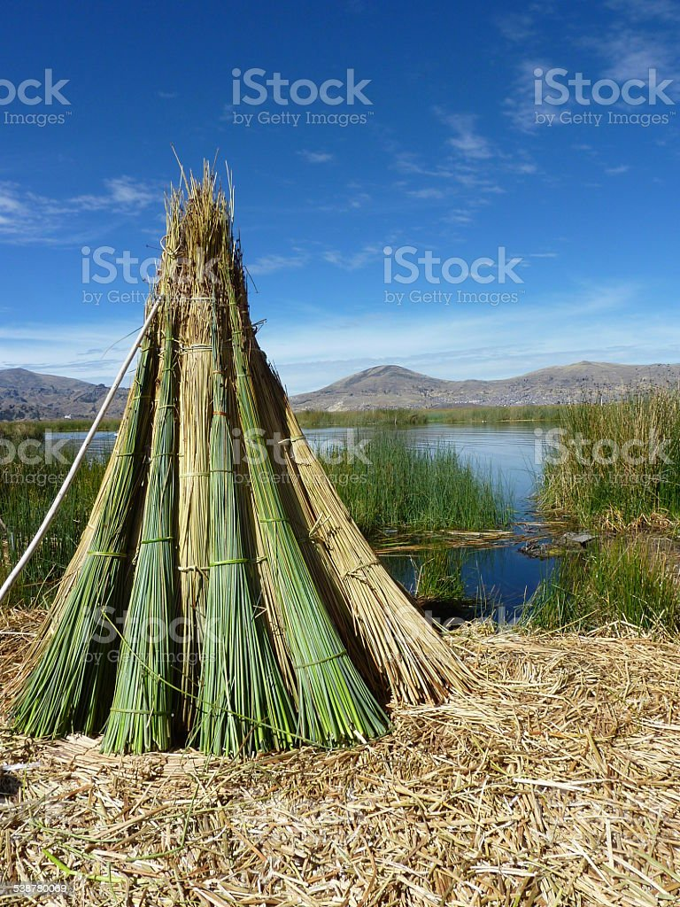 Reeds at Uros island in Peru stock photo